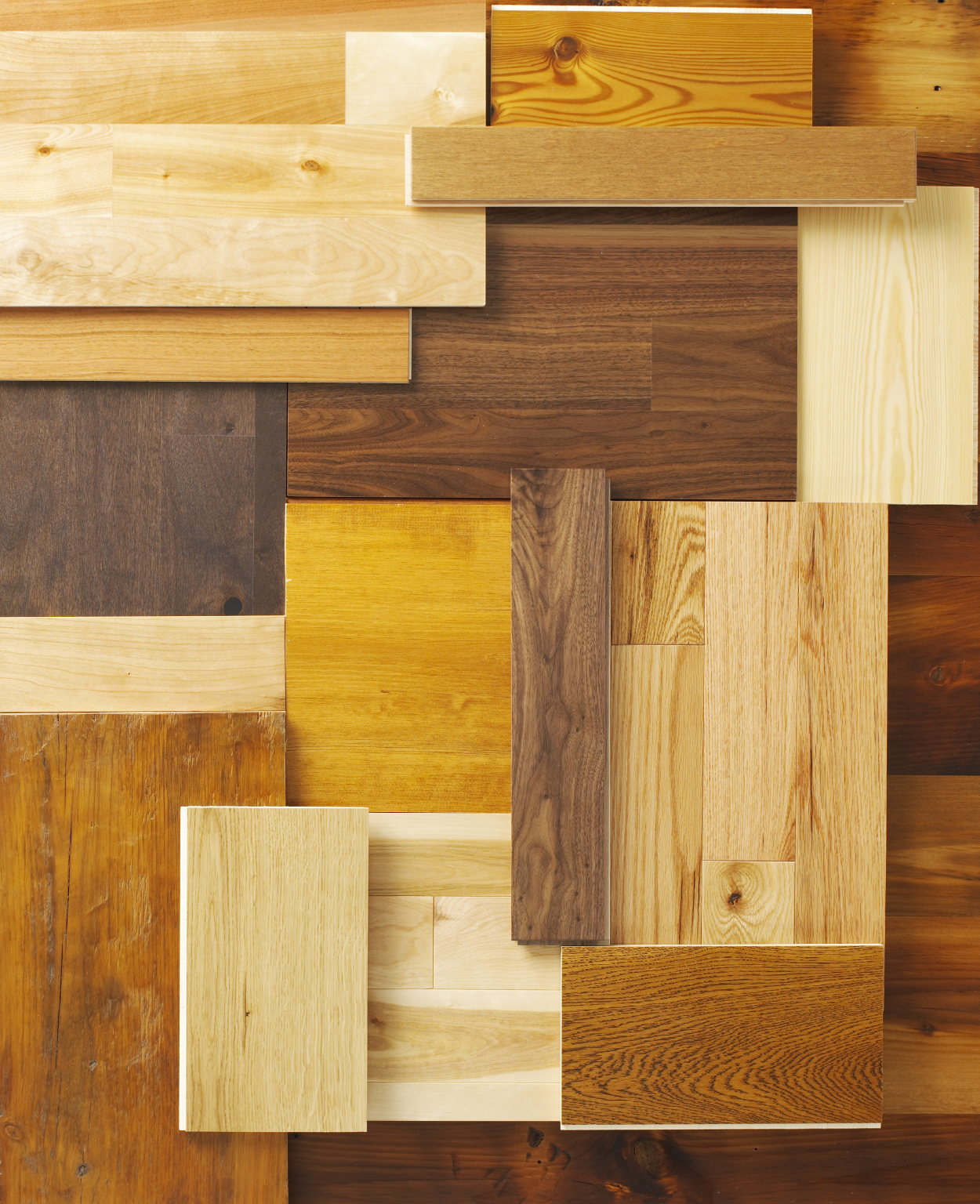 Amazing Different Wood Floors In Rooms Photos